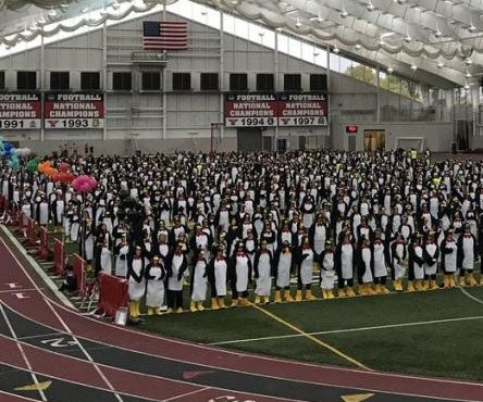 Nearly 1,000 dress in penguin costumes for Guinness record