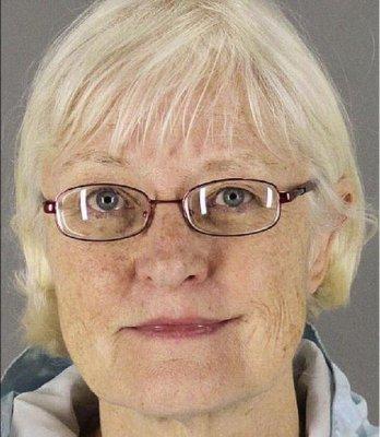 Serial stowaway arrested again in Phoenix