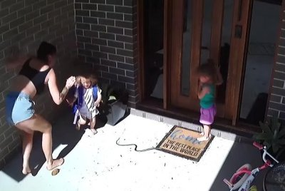 Family's close call with venomous snake caught on camera