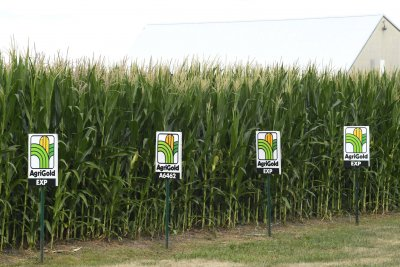Appeals court strikes down EPA refinery waivers of biofuel blending requirements
