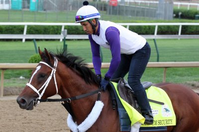 Maximum Security won't run in Preakness after Derby disqualification