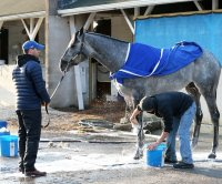 Snow falls on Kentucky Derby prospects