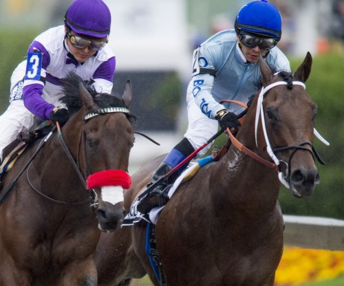 Derby winner Nyquist pulls out of Breeders' Cup