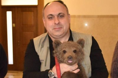 Man takes orphaned bear cub to the Georgian Parliament