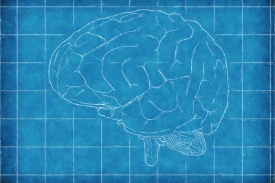 Brain stimulation restores movement in rats after stroke