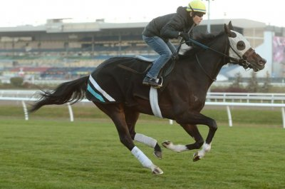 Triple Crowns on line in Japan, Canada during weekend horse racing