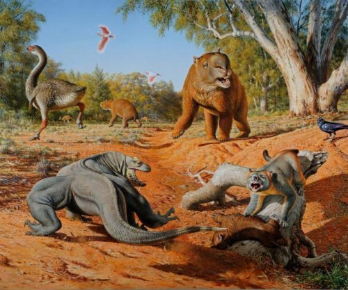 Humans killed off Australia's megafauna, not climate change