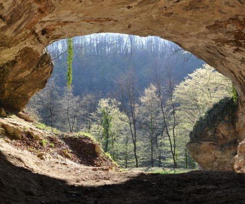 Cave sediments yield DNA of early human relatives