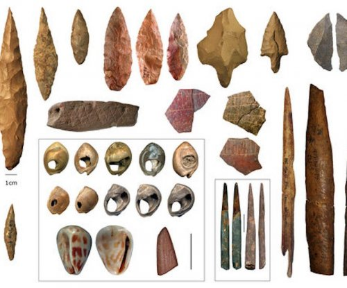 Humans evolved in small groups across diverse environs in Africa