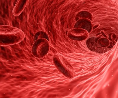 Blood flow differs in men, women