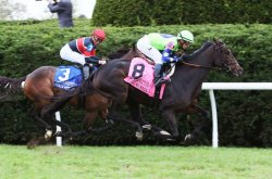 UPI Horse Racing Roundup: Rushing Fall wins at Keeneland