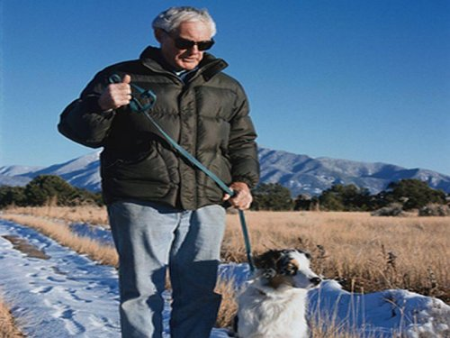 Walking dogs can boost older adults exercise levels