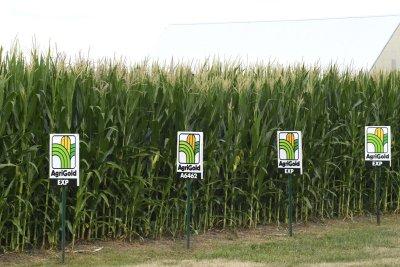 Farmers, biofuel groups dismayed over EPA ruling