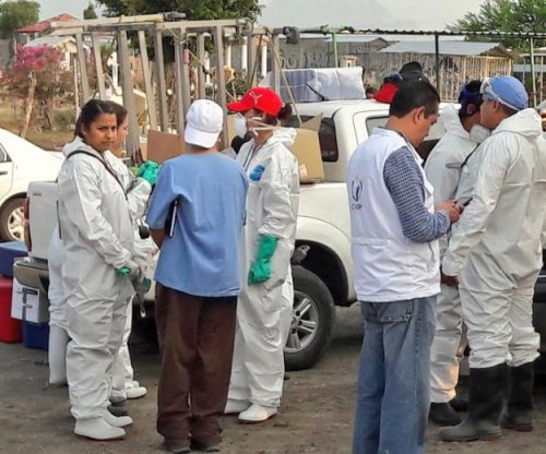 Mexico begins exhuming 116 bodies found in mass grave