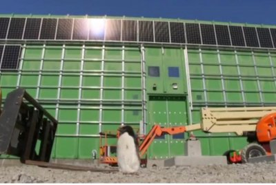 Penguin takes tour of solar farm in Antarctica