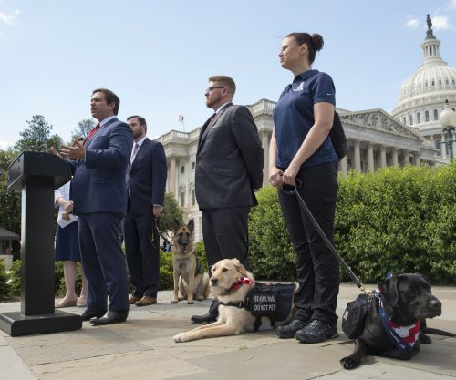 Senators reintroduce PAWS Act, saying dogs can be a veteran's best friend