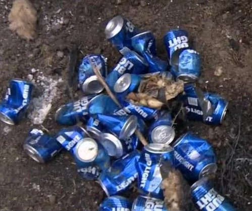 Man uses Bud Lite to keep wildfire flames away from California home