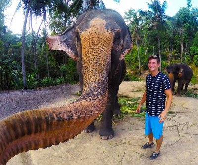 Elephant snatches student's camera, snaps an 'elphie'