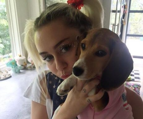 Miley Cyrus gets new pup, celebrates fourth with Liam Hemsworth