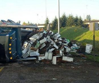 Washington truck crash releases millions of bees
