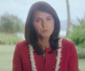 Former DNC Vice Chair Gabbard: 'Sanders understands costs of war'