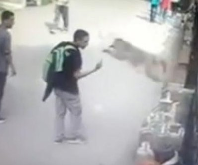 Indian monkey takes revenge on teen for rude gesture