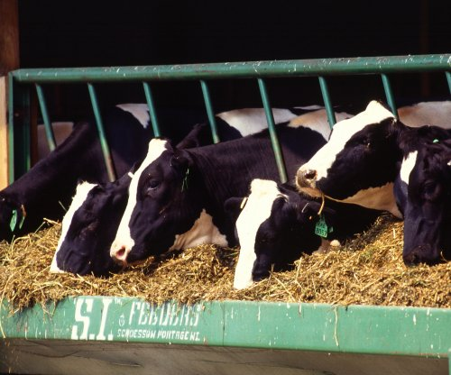 Growing number of dairy farmers want U.S. to regulate milk supply