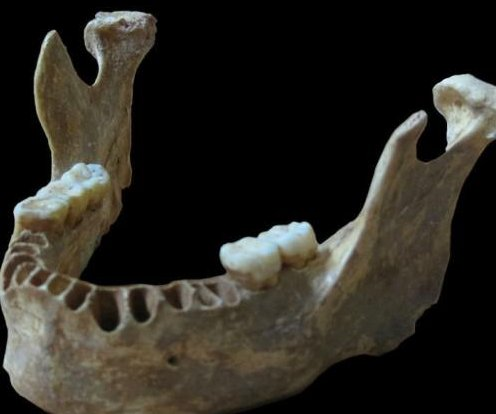 Early Romanian man was closely related to Neanderthals