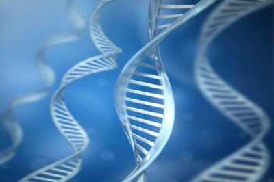 Many Americans curious, but cautious, about gene testing