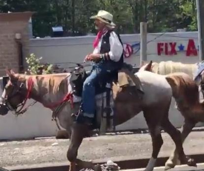 Cowboy with two horses blocks traffic on New York bridge