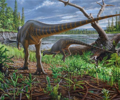 Turkey-sized dinosaur found caught in an ancient logjam