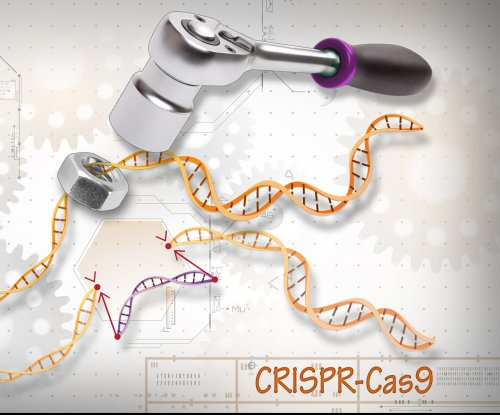 Ethics of germline editing must keep up with technology