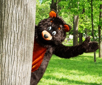 Man in bear costume harasses mother and cubs in Alaska