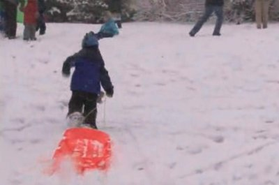 'Sled Free or Die:' Sled-In protests ban on Capitol Hill