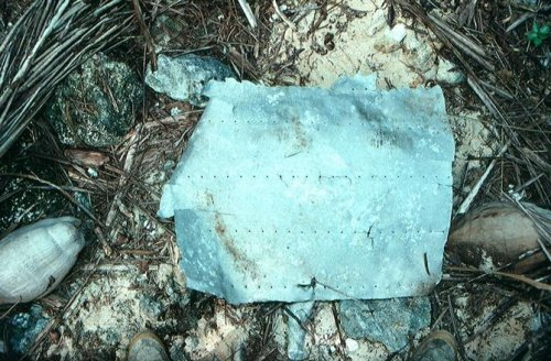 Piece of Amelia Earhart plane identified from Nikumaroro
