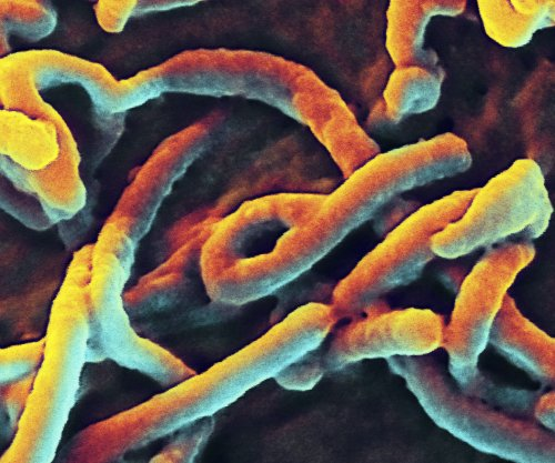 North Korea blames U.S. for Ebola outbreak