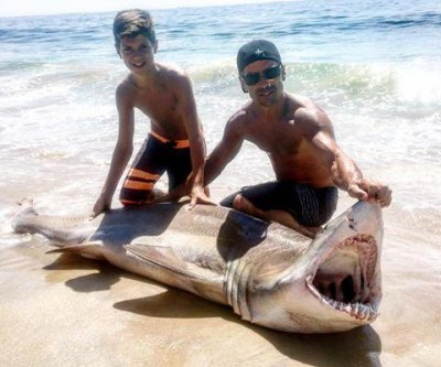 New Jersey teen reels in 250-pound shark with help from dad