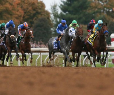 Breeders' Cup Preview: Current fields and what to expect from each race