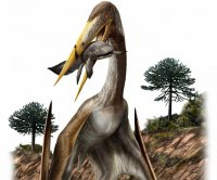 Massive flying pterosaurs had spoked vertebrae to support especially long necks