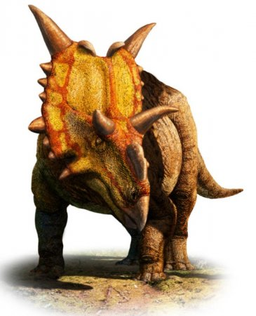 'Alien' horned dinosaur found in Canada