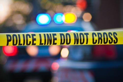 Georgia cop shot dead, suspect at large