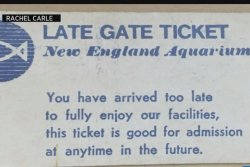 New England Aquarium honors woman's 38-year-old ticket