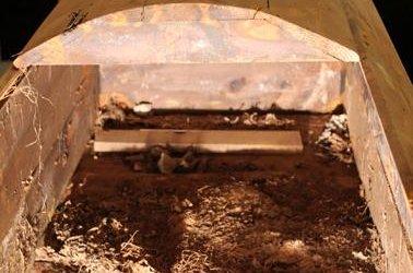 Judge: Return Lee Harvey Oswald's casket to brother