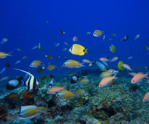 Biologists publish first global map of fish genetic diversity