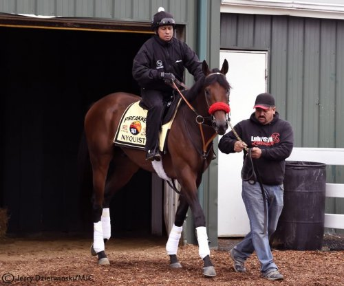 Preakness 2016: Derby winner Nyquist gets first look at Pimlico