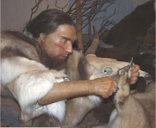 Ancient human ancestors had Neanderthal ears