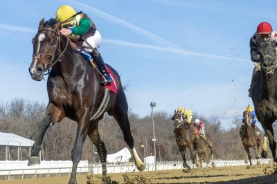 UPI Horse Racing Roundup: Year ends with promise for 2019