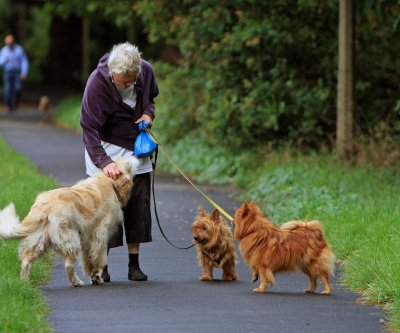 Pets can be true lifesavers for seniors