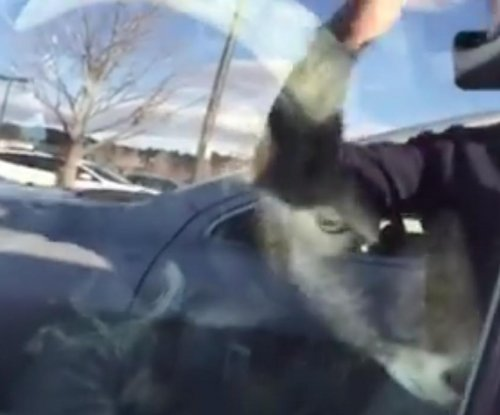 Goat found in car in Home Depot parking lot