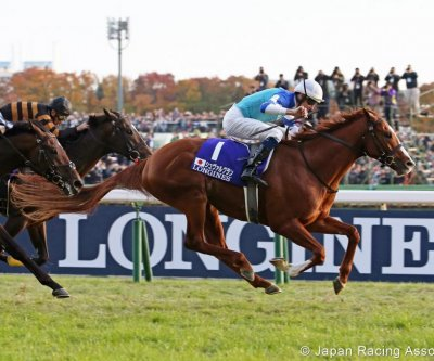 Japan Cup tops weekend horse racing agenda; Bahrain steps into racing limelight